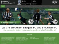 brockhambadgersfc.co.uk