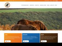 exmoorponysociety.org.uk