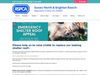 rspca-brighton.org.uk