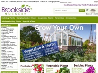 brooksidenursery.co.uk