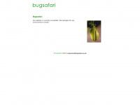 bugsafari.co.uk
