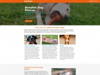 rescuedogs.co.uk