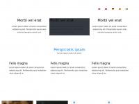 clockandwatchfairs.co.uk