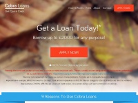 cobrapaydayloans.co.uk