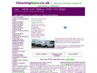 cleaningking.co.uk