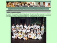 clevedonkarate.co.uk