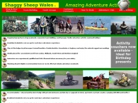 adventureholidaywales.co.uk