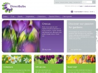 directbulbs.co.uk