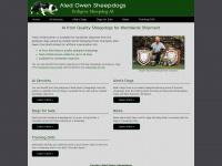 aled-owen-sheepdogs.co.uk