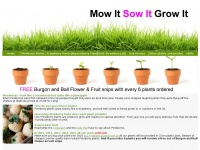 mowitsowitgrowit.co.uk