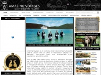 amazingvoyages.co.uk