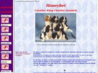 honeybet.co.uk