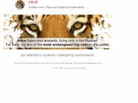 amur.org.uk