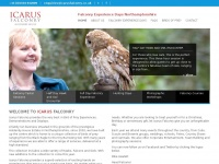 icarusfalconry.co.uk