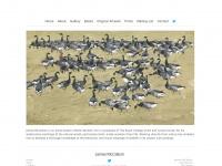 jamesmccallum.co.uk