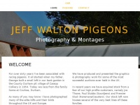 jeffwaltonpigeons.co.uk