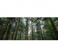 keighleytimber.co.uk