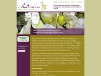 anthurium-plants.co.uk