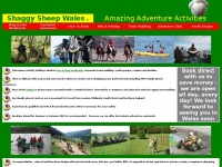 shaggysheepwales.co.uk