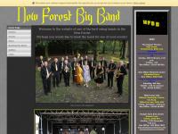 newforestbigband.co.uk