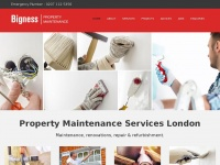 Bigness-maintenance.co.uk