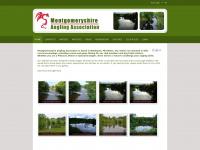 montgomeryshireanglingassociation.co.uk