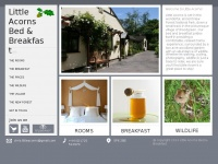 new-forest-bed-and-breakfast.co.uk