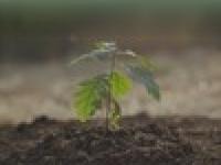 oakfieldcapital.co.uk
