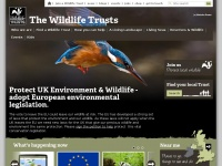 wildlifetrusts.org