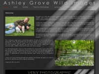 ashleygrovewildimages.co.uk