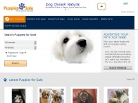 puppies-forsale.co.uk