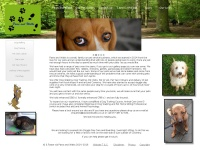 pawsandwalks.co.uk