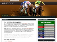 ayr-gold-cup.co.uk