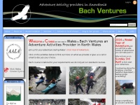 bachventures.co.uk