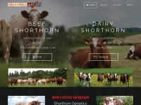Shorthorn.co.uk