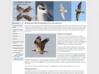 Shropshirebirder.co.uk