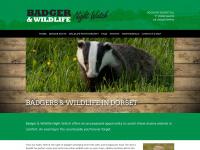 Badgerwatchdorset.co.uk