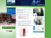 balloovets.co.uk