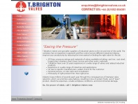 tbrightonvalves.co.uk