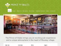 theprincemoseley.co.uk
