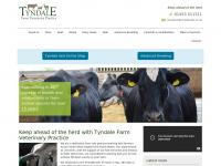 tyndalevets.co.uk