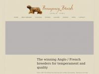 beaugencybriards.co.uk