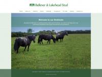 Bellevershetlands.co.uk