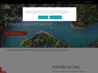 bsigroup.com
