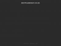 Bestplaneseat.co.uk