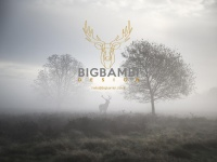 Bigbambi.co.uk