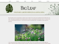 Big-leaf.co.uk