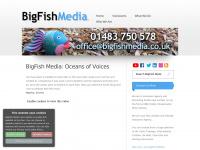 Bigfishmedia.co.uk