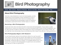 birdphotography.co.uk