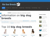 bigdogbreeds.co.uk
